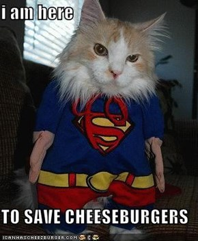 i am here   TO SAVE CHEESEBURGERS