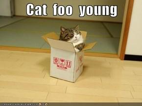 Cat  foo  young