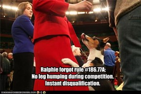 Ralphie forgot rule #186.77A: No leg humping during competition. Instant disqualification.