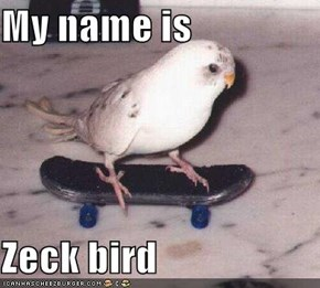 My name is  Zeck bird