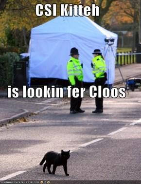 CSI Kitteh is lookin fer Cloos