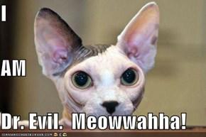 I  AM Dr. Evil.  Meowwahha!