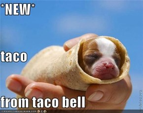 *NEW* taco from taco bell