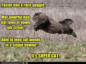 Faster dan a race goggie.