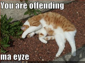 You are offending   ma eyze