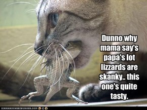 Dunno why mama say's papa's lot lizzards are skanky.. this one's quite tasty.