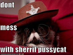 dont  mess with sherrif pussycat