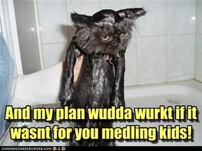 And my plan wudda wurkt if it wasnt for you medling kids!