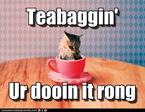 Teabaggin'   Ur dooin it rong