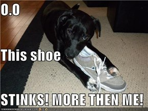 O.O This shoe  STINKS! MORE THEN ME!