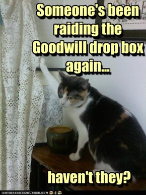 Someone's been raiding the Goodwill drop box again...       haven't they?