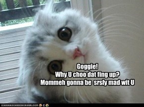 Goggie! Why U choo dat fing up? Mommeh gonna be  srsly mad wit U