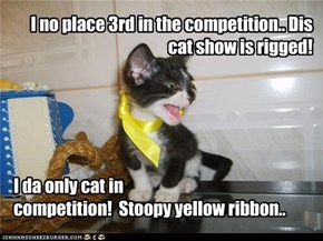 I no place 3rd in the competition.. Dis cat show is rigged!