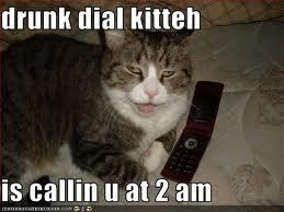 dRUnK DiAL kiTtEh iS caLlIN u aT 2 aM