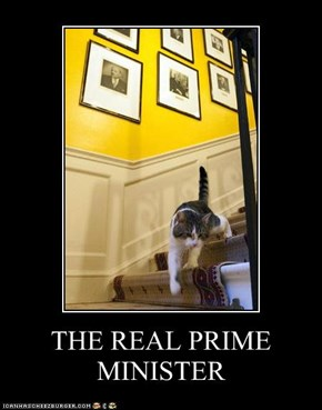 THE REAL PRIME MINISTER