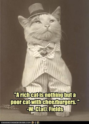 """A rich cat is nothing but a poor cat with cheezburgers. ""  -W. C(at). Fields"