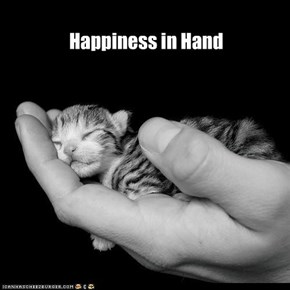 Happiness in Hand