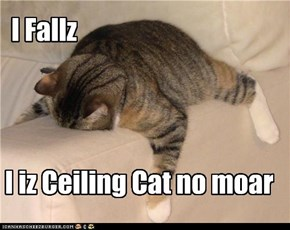 I Iz Ceiling Cat No Moar
