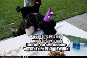 Happeh birfday to meh, Happeh birfday to meh, I can has awl dese muchees 'Cause da birfday Goggie is meh!