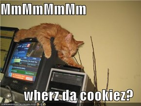 MmMmMmMm  wherz da cookiez?