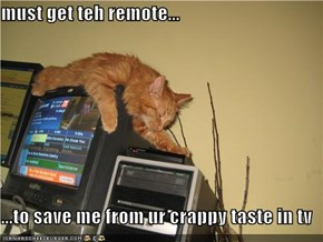 must get teh remote...  ...to save me from ur crappy taste in tv