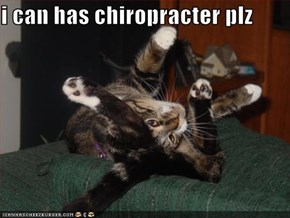 i can has chiropracter plz