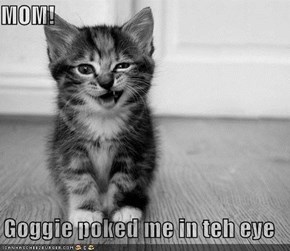 MOM!  Goggie poked me in teh eye