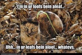 I'm in ur loofs bein aleaf...