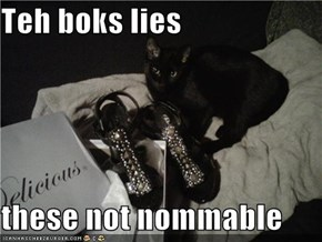 Teh boks lies  these not nommable