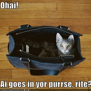 Ohai!   Ai goes in yor purrse, rite?