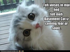 Teh voises in mai hed tell meh  Basement Cat iz coming foar ur soulz.