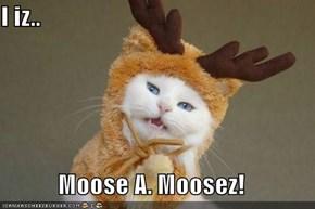 I iz..  Moose A. Moosez!