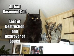 All hail  Basement Cat!  Lord of Destruction and  Destroyer of  Souls!