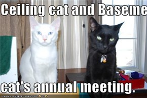 Ceiling cat and Basement   cat's annual meeting.