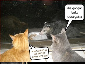 is not as BAD as dat GHOST kitteh WIT him!