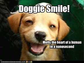Doggie Smile!