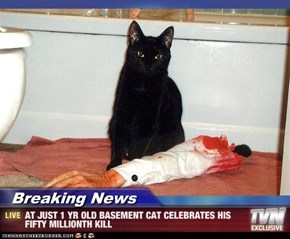 Breaking News - AT JUST 1 YR OLD BASEMENT CAT CELEBRATES HIS FIFTY MILLIONTH KILL