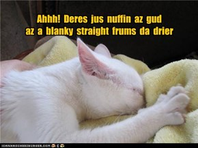 Ahhh!  Deres  jus  nuffin  az  gud   az  a  blanky  straight  frums  da  drier
