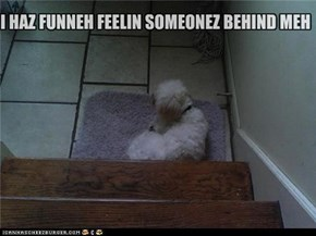 I HAZ FUNNEH FEELIN SOMEONEZ BEHIND MEH