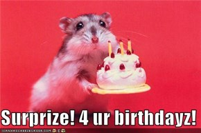 Surprize! 4 ur birthdayz!