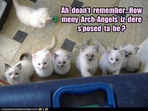 Ah  doan't  remember...How  meny  Arch-Angels  iz  dere  s'posed  ta  be ?