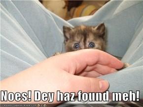 Noes! Dey haz found meh!