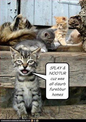 SPLAY & NOOTUR cuz wee all disurb furebbur homes