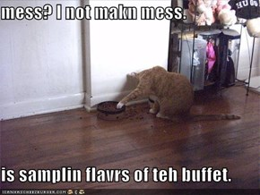 mess? I not makn mess.  is samplin flavrs of teh buffet.