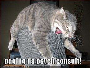 paging da psych consult!