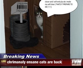 Breaking News - chrimanaly ensane cats are back