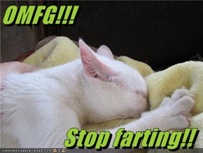 OMFG!!!  Stop farting!!