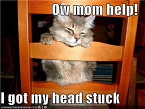 Ow mom help!  I got my head stuck