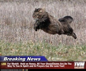 Breaking News - For Rhokit:  Hold on Honey, All Your CheezChums Are On The Way To You In Spirit and In Prayers Cuz We Love You!