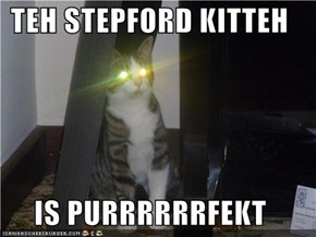 TEH STEPFORD KITTEH  IS PURRRRRRFEKT